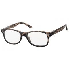 Очила за четене (SPH + 2.00) INfocus 4114 Grey